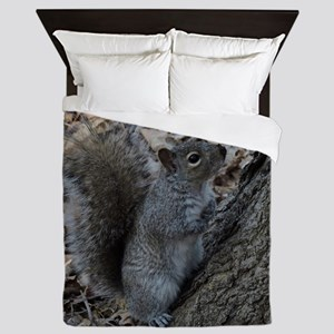 Squirrel 2 Queen Duvet