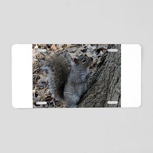 Squirrel 2 Aluminum License Plate