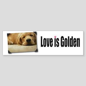 Love is Golden bumper sticker