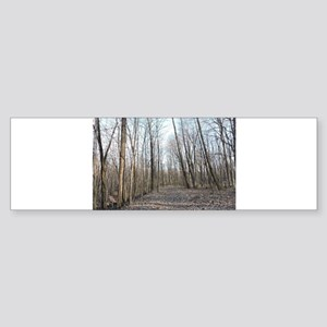 Dead Path Bumper Sticker