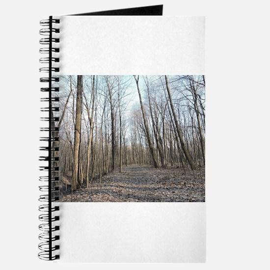 Dead Path Journal