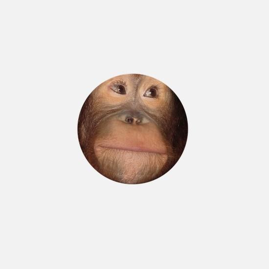 Cute Chimpanzee Mini Button