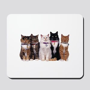 5 Cats Mousepad