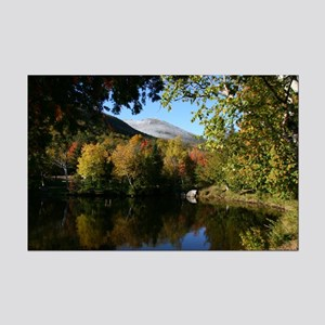 Whiteface pond Mini Poster Print