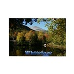 Whiteface pond Rectangle Magnet (100 pack)
