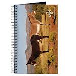 7MSN Ranch Journal