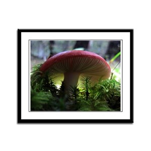 Red Mushroom in Forest Framed Panel Print