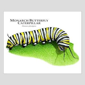 Monarch Butterfly Caterpillar Small Poster