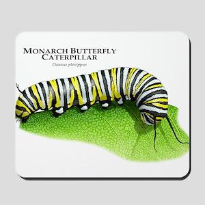 Monarch Butterfly Caterpillar Mousepad