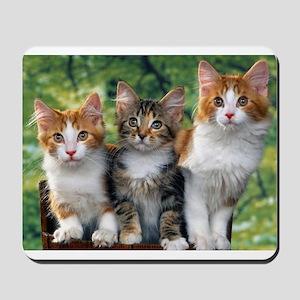 3 Cats Mousepad