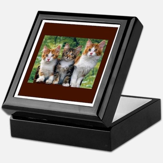3 Cats Keepsake Box