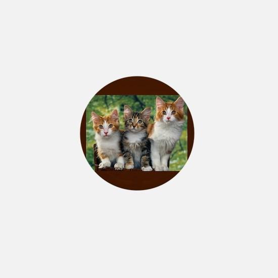 3 Cats Mini Button