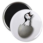 New Breed Software Hatching Penguin Logo Magnets