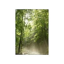 Spring Forest Mist 5'x7'area Rug