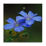 Blue Flowers Tile Coaster