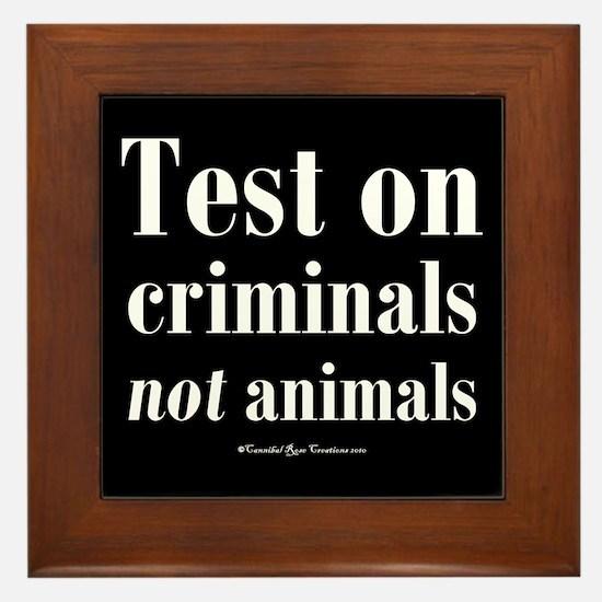 Criminal Behavior Framed Tile 2