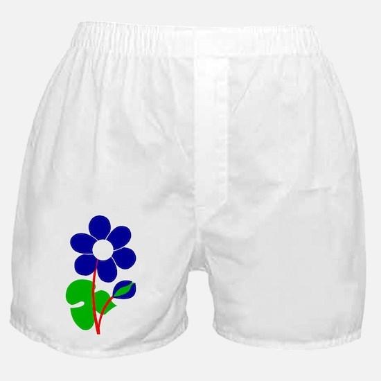 Funny Danica Boxer Shorts