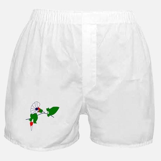 Unique Danica Boxer Shorts