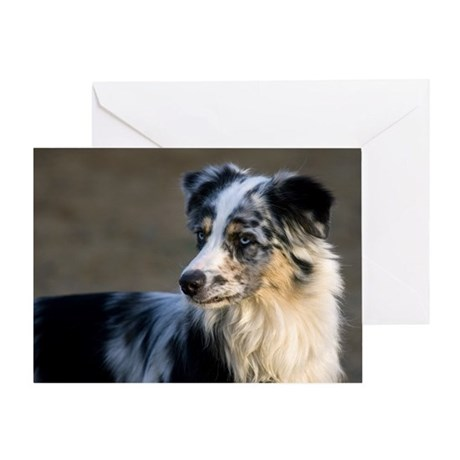 Aussie Looking Left Greeting Card