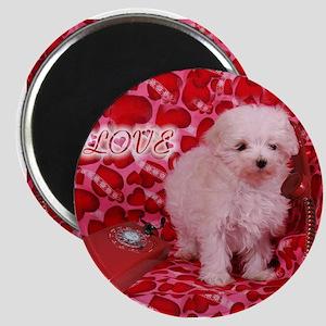 Love Puppy Magnet