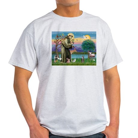 St Francis / Tab Tiger Cat Light T-Shirt