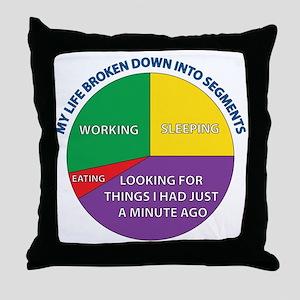 My life broken down into segments. Throw Pillow