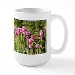 Pink Tulips Mugs