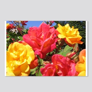 Summer Roses Postcards (Package of 8)