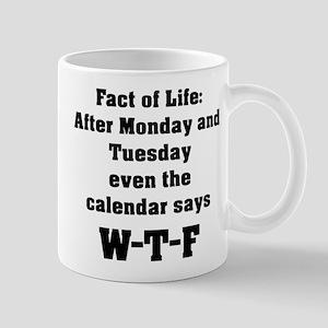 Fact of Life Mug