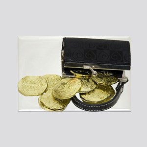 Coins Purse Gold Rectangle Magnet