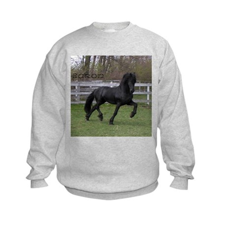 BARON Kids Sweatshirt