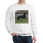 BARON Sweatshirt