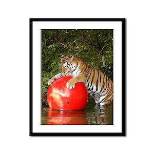 Bengal Tigers Framed Panel Print
