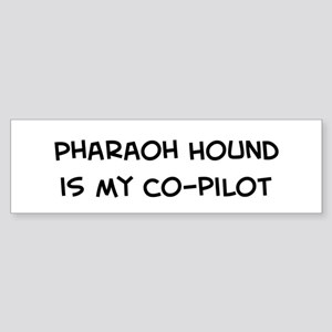 Co-pilot: Pharaoh Hound Bumper Sticker