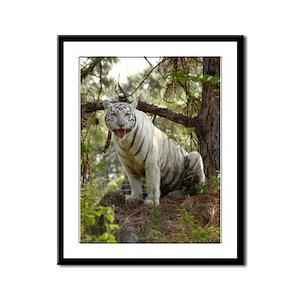 White Tiger Framed Panel Print