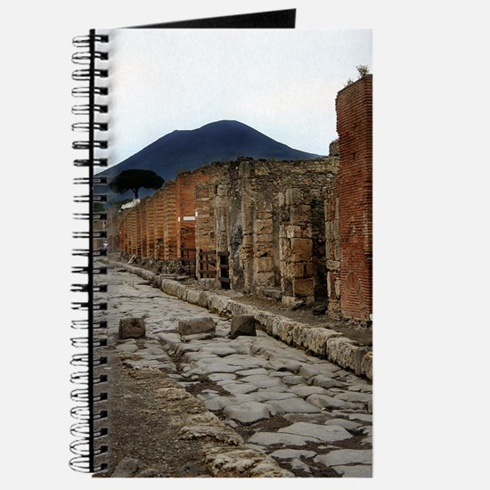 Mt. Vesuvius & Pompeii Journal
