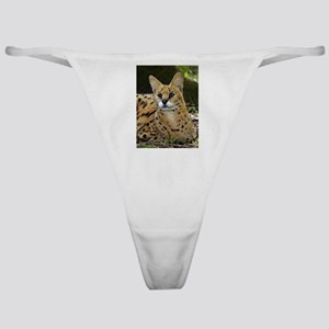 Serval Classic Thong