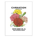 Vintage Carnation Seed Label Small Poster