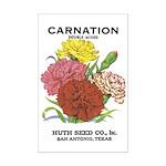 Vintage Carnation Seed Label Mini Poster Print