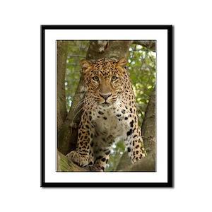 Leopard Framed Panel Print