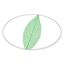 Green Leaf Sticker (Oval)