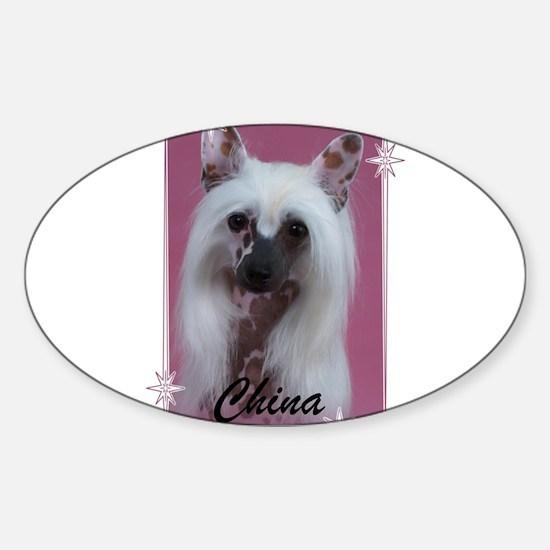 Cute Westminster dog show Sticker (Oval)
