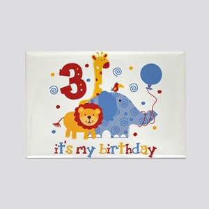 Safari 3rd Birthday Rectangle Magnet
