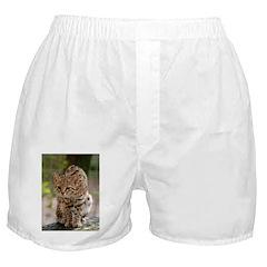 Geoffroy Cat Boxer Shorts