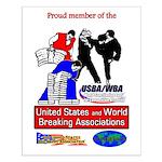 USBA/WBA Small Poster