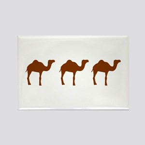 Camels Rectangle Magnet