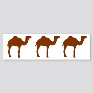 Camels Sticker (Bumper)