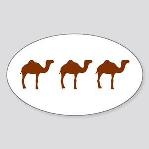 Camels Sticker (Oval)