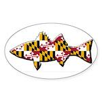 Fish Maryland Oval Bumper Sticker