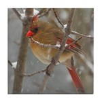 Female Cardinal Tile Coaster